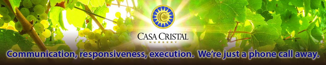 Casa Cristal