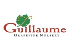 Guillaume Grapevine Nursery Inc.